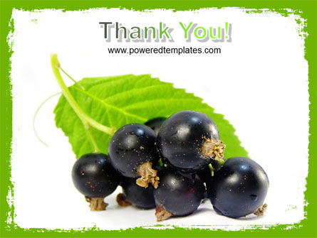 Free Blackcurrant PowerPoint Template Slide 20