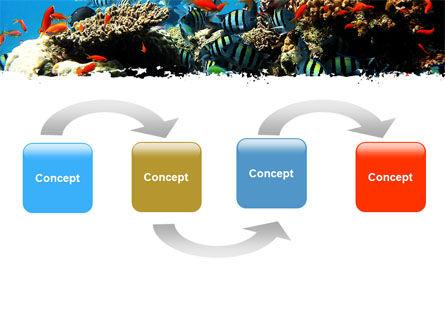 Coral Ledge PowerPoint Template, Slide 4, 05955, Nature & Environment — PoweredTemplate.com