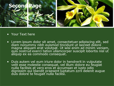 Yellow Flowers PowerPoint Template, Slide 2, 05995, Nature & Environment — PoweredTemplate.com