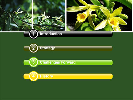 Yellow Flowers PowerPoint Template, Slide 3, 05995, Nature & Environment — PoweredTemplate.com