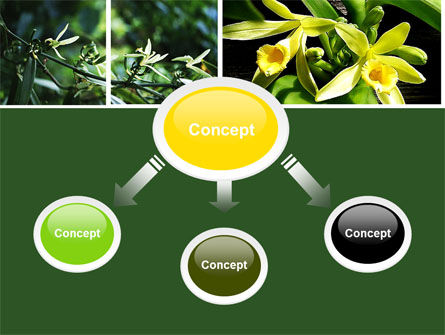 Yellow Flowers PowerPoint Template, Slide 4, 05995, Nature & Environment — PoweredTemplate.com