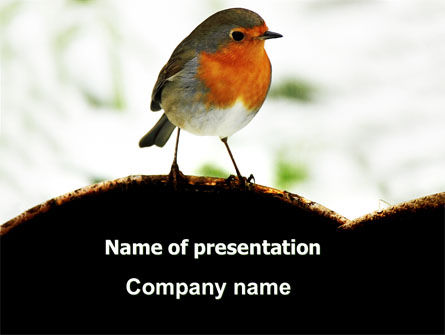 Animals and Pets: Robin PowerPoint Template #06074
