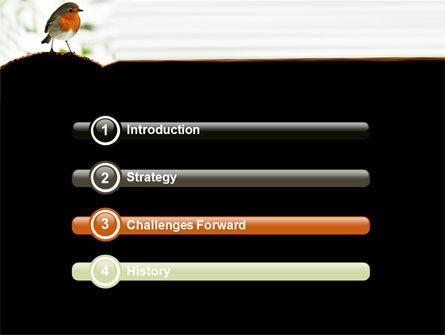 Robin PowerPoint Template, Slide 3, 06074, Animals and Pets — PoweredTemplate.com