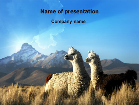 Llama PowerPoint Template, 06079, Agriculture — PoweredTemplate.com