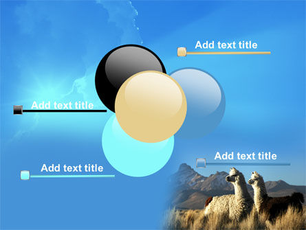 Llama PowerPoint Template Slide 10