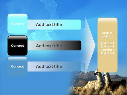 Llama PowerPoint Template Slide 12