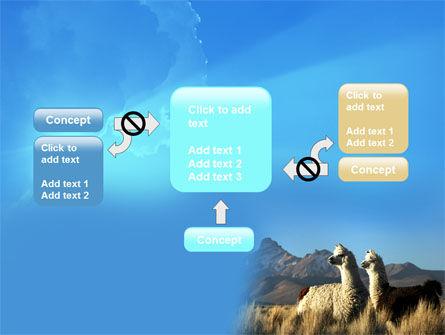 Llama PowerPoint Template Slide 13