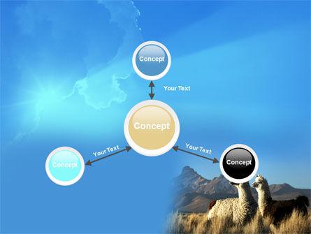 Llama PowerPoint Template Slide 14