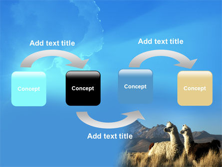 Llama PowerPoint Template Slide 4