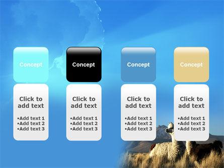 Llama PowerPoint Template Slide 5