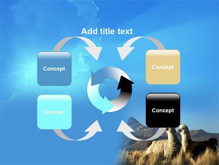 Llama PowerPoint Template Slide 6