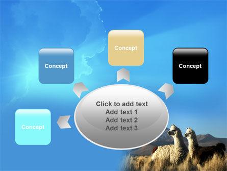 Llama PowerPoint Template Slide 7
