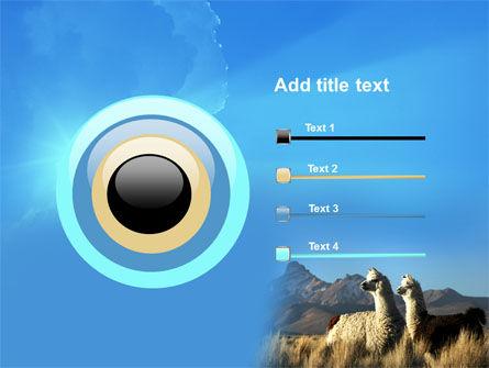 Llama PowerPoint Template Slide 9
