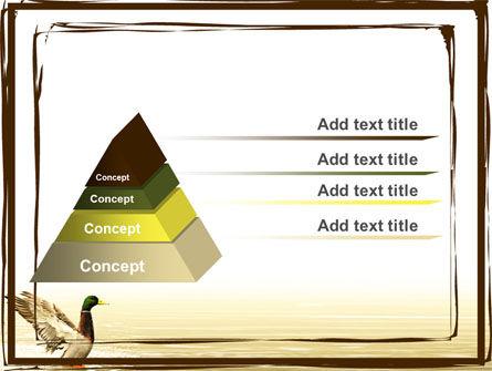 River Duck PowerPoint Template, Slide 4, 06105, Animals and Pets — PoweredTemplate.com