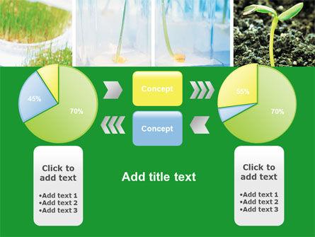 Free Plant Breeding In Laboratory PowerPoint Template Slide 11