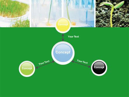 Plant Breeding In Laboratory Free PowerPoint Template Slide 14