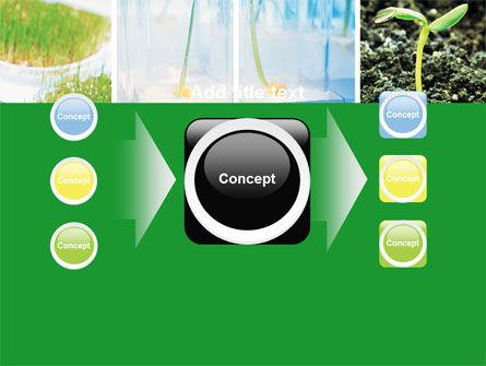 Free Plant Breeding In Laboratory PowerPoint Template Slide 17