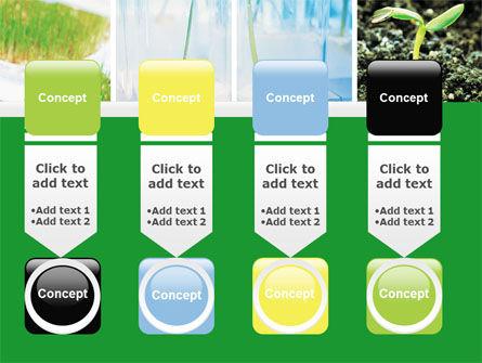 Plant Breeding In Laboratory Free PowerPoint Template Slide 18