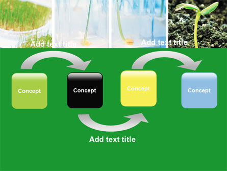 Plant Breeding In Laboratory Free PowerPoint Template, Slide 4, 06192, Technology and Science — PoweredTemplate.com