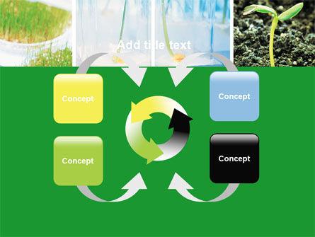 Plant Breeding In Laboratory Free PowerPoint Template Slide 6
