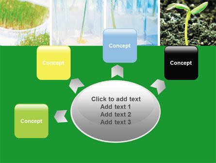 Plant Breeding In Laboratory Free PowerPoint Template Slide 7