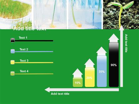 Plant Breeding In Laboratory Free PowerPoint Template Slide 8