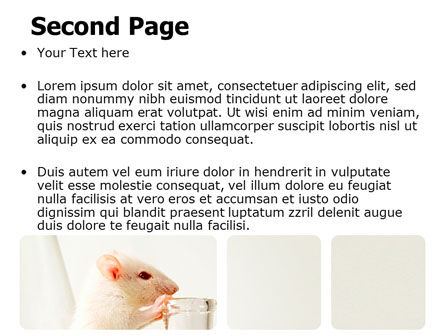 Rodent PowerPoint Template, Slide 2, 06214, Technology and Science — PoweredTemplate.com
