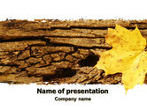 Nature & Environment: Bark Free PowerPoint Template #06245