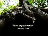 Nature & Environment: Wortel Van De Boom PowerPoint Template #06268
