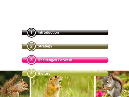 Squirrel PowerPoint Template, Slide 3, 06311, Animals and Pets — PoweredTemplate.com
