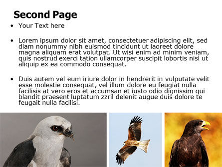 Bird Of Prey PowerPoint Template, Slide 2, 06331, Animals and Pets — PoweredTemplate.com