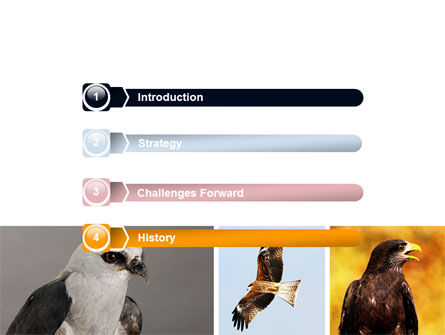 Bird Of Prey PowerPoint Template, Slide 3, 06331, Animals and Pets — PoweredTemplate.com