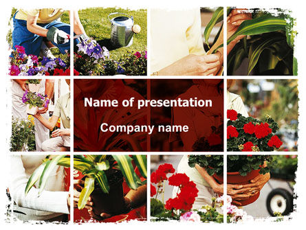 Pot Plants PowerPoint Template
