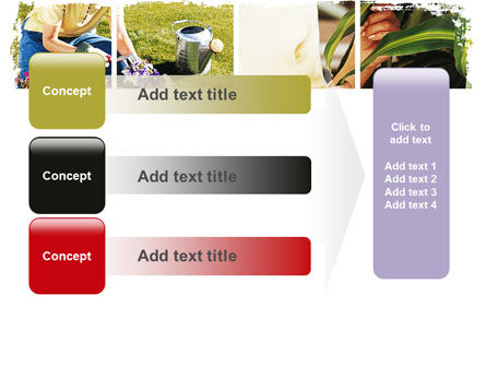 Pot Plants PowerPoint Template Slide 12