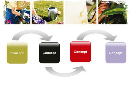 Pot Plants PowerPoint Template Slide 4