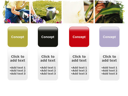 Pot Plants PowerPoint Template Slide 5