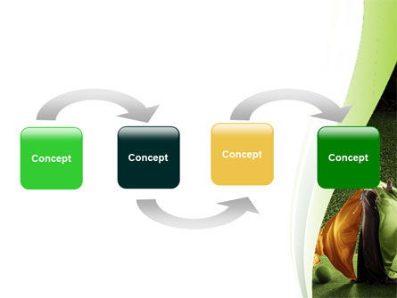 Eco Girl PowerPoint Template, Slide 4, 06406, Nature & Environment — PoweredTemplate.com