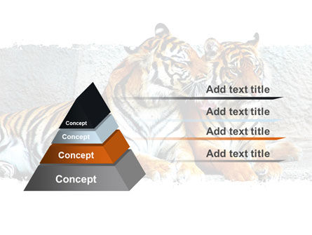 Tigers PowerPoint Template, Slide 4, 06421, Animals and Pets — PoweredTemplate.com