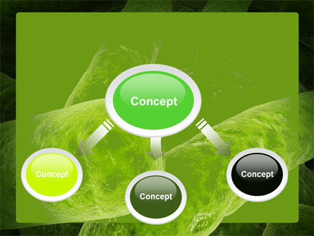Bacilli In Green Color PowerPoint Template, Slide 4, 06436, Medical — PoweredTemplate.com