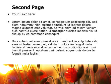 Poppies PowerPoint Template, Slide 2, 06440, Nature & Environment — PoweredTemplate.com