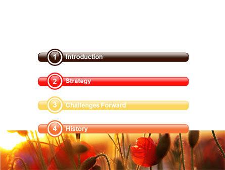 Poppies PowerPoint Template, Slide 3, 06440, Nature & Environment — PoweredTemplate.com