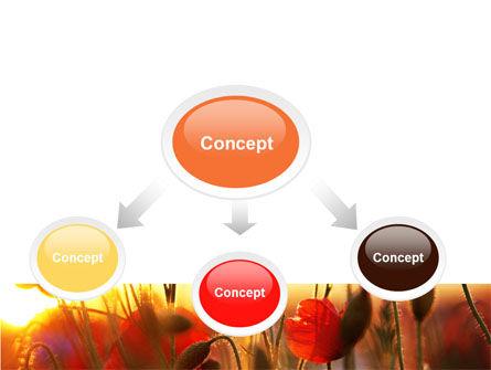 Poppies PowerPoint Template, Slide 4, 06440, Nature & Environment — PoweredTemplate.com