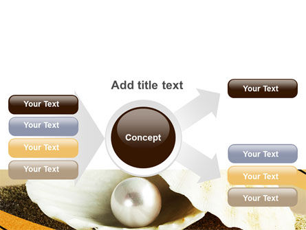 Pearl Shell PowerPoint Template Slide 14
