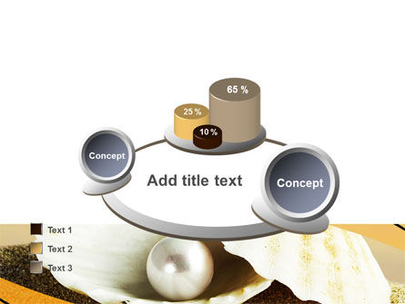 Pearl Shell PowerPoint Template Slide 16
