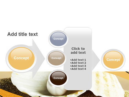Pearl Shell PowerPoint Template Slide 17