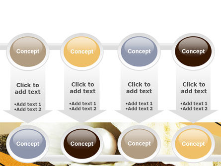 Pearl Shell PowerPoint Template Slide 18