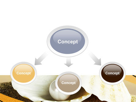 Pearl Shell PowerPoint Template Slide 4