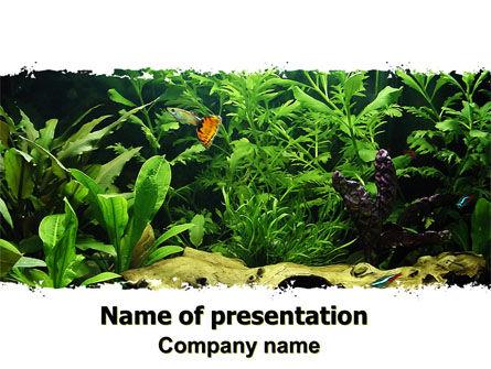 Nature & Environment: Aquarium Fish Species PowerPoint Template #06452