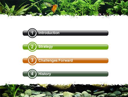Aquarium Fish Species PowerPoint Template, Slide 3, 06452, Nature & Environment — PoweredTemplate.com