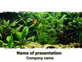 Nature & Environment: Aquarium Fish Species PowerPoint Template #06452